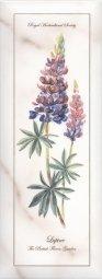 Декор Kerama Marazzi Ноттингем Цветы NT\A85\15005 15х40