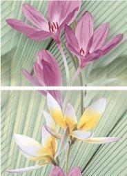 Панно Дельта Керамика Palm 20x60