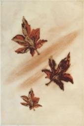 Декор ВКЗ Джованни «Осенний» коричневый 20x30