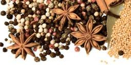 Декор Lasselsberger Spices 1 19,8х39,8