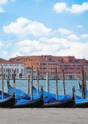 Декор Береза-керамика Азалия Венеция 2 синий 25x35