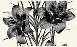 Декор Нефрит-керамика Piano 04-01-1-09-03-04-081-2 40x25 Серый